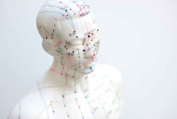 model showing traditional Chinese medicine facial acupuncture points